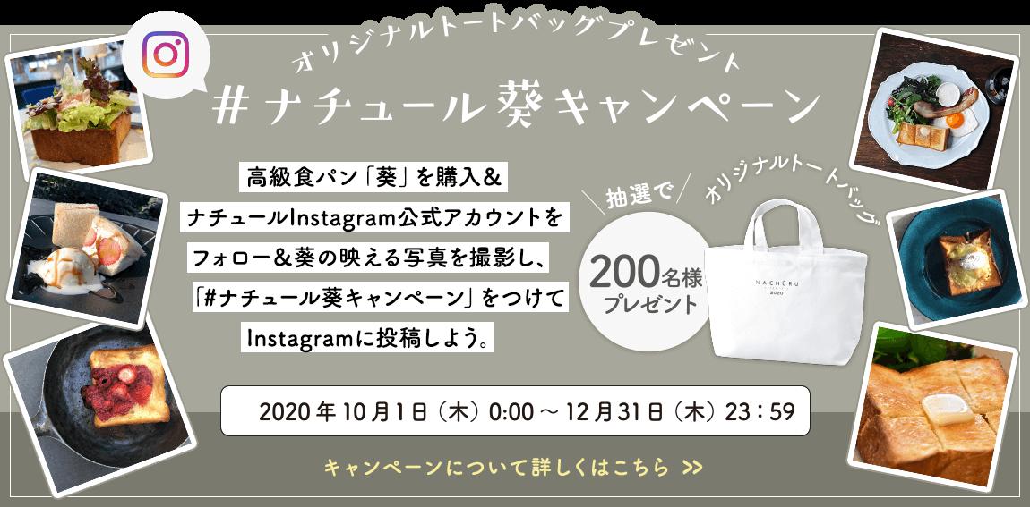 ナチュール葵キャンペーン