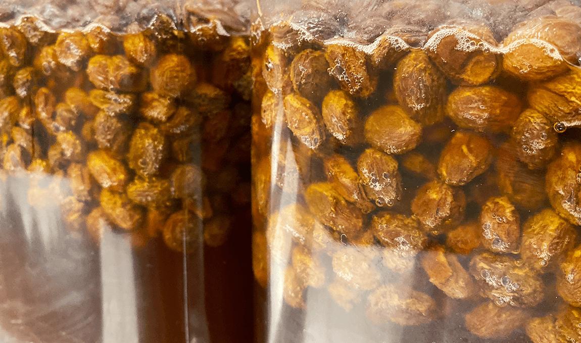 天然酵母と国産小麦の静岡のぱん屋 ナチュール